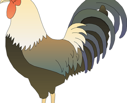 horoscope du coq