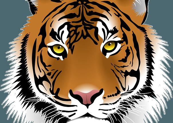Horoscope du signe du Tigre